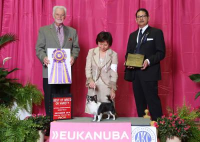 2014 CCA Regional – Eukanuba